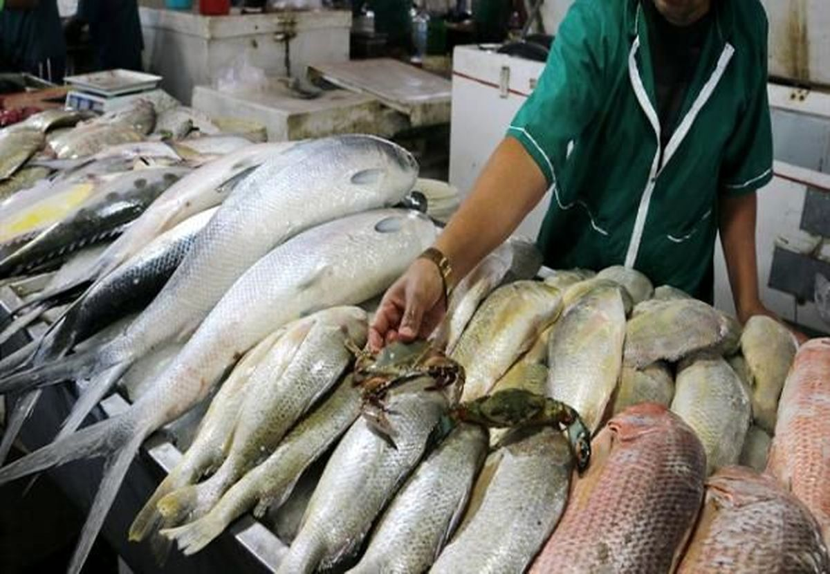 گرانی گوشت قرمز با بازار ماهی چه کرد؟ +آخرین نرخ ها